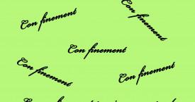 Continuer la lecture > LE CON FINEMENT